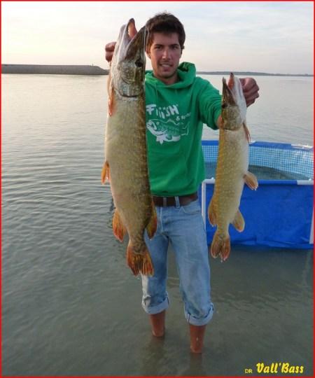 Deux poissons du quota...